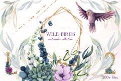 Wild Birds Product Image 1