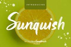 Sunquish Stylish Handbrush Product Image 1