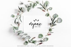 Gingerbread Font Duo 9 Premade Logo templates Product Image 6