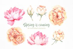 Spring is coming. Watercolor set Product Image 2