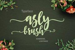 Asly Brush Product Image 1