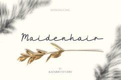 Maidenhair   Monoline Web Font Product Image 1