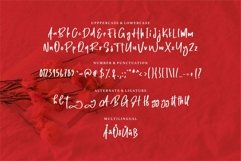 Web Font Hanty - Modern Handwritten Font Product Image 4