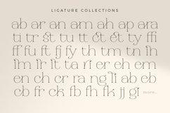 Religan - Modern Serif Font Product Image 2
