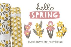 SPRING illustrations & patterns Product Image 1