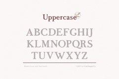 Morgen - Handwritten Serif Font Product Image 5