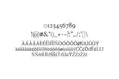 Hagito Serif Font Family Product Image 4