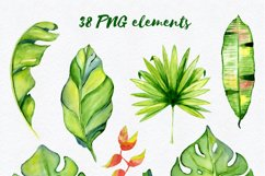 Tropical leaves Watercolor clipart Product Image 3