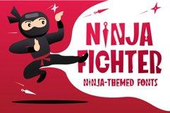 Ninja Fighter Product Image 1