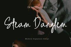 Steam danglem signature Font Script Product Image 1