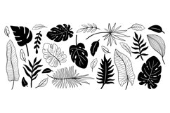 Plant collection black color. Product Image 1