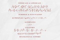 wina aprilina script font Product Image 9