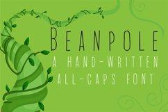 PN Beanpole Product Image 1