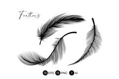 Black Feathers Stencil Boho Line Art Design Elements Product Image 5