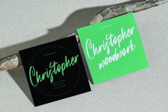 Web Font Brianstorm - Signature Font Product Image 6