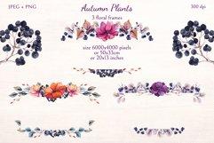 Autumn Plants Product Image 6