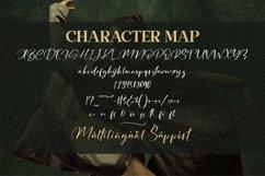 Rosalinda - Beautiful Script Font Product Image 2
