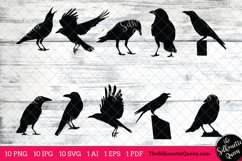 Crow Silhouettes Clipart Clip Art(AI, EPS, SVGs, JPGs, PNGs, PDF) , Crow Clip Art Clipart Vectors - Commercial and Personal Use Product Image 1