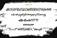 Web Font Assertion - Stroke Script Font Product Image 2