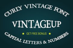 Vintage font with curls Product Image 1