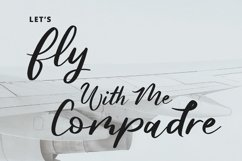 Butterfly Modern Script Font Product Image 4