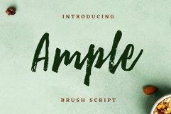 Ample Brush Script Product Image 1