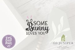 Farmhouse Easter Sign SVG, Some Bunny Loves You SVG Product Image 2