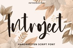 Web Font Introject - Script Font Product Image 1