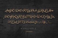 Golden Brush font Product Image 2