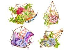 Succulents terrarium creator Vol.1 Product Image 3