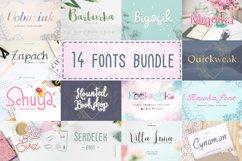 14 Fonts bundle vol.2 Product Image 2