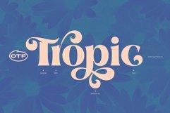 Aprila Font Family Product Image 3
