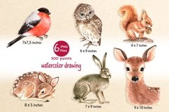clipart forest animals Product Image 2