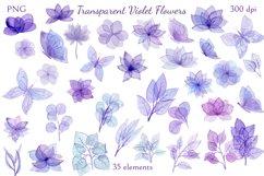 Transparent Violet Flowers Product Image 2