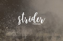 Strider Product Image 3