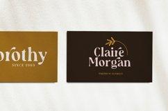 Audrey Mirages - Organic Serif Product Image 4