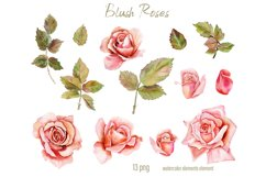Pink Blush Watercolor Floral Clipart Separate Elements PNG Product Image 3