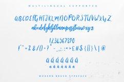Lustinmal Script Product Image 6