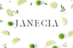 Janecia Serif Typeface Product Image 1