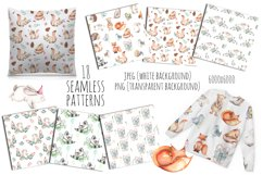 Cute forest Animals. Patterns + Wreaths Product Image 2