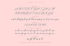 Reffinaya | Monoline Script Typeface Product Image 3