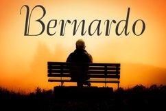 Bernardo (FAMILY PACK PROMOTIONAL) Product Image 1