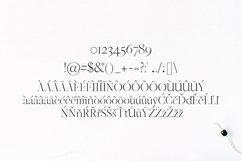 Jaavon Serif Font Family Product Image 4