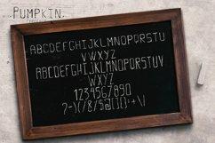 Pumpkin Script Typeface Product Image 5