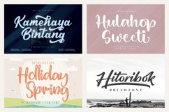 Spectacular All Collection Mega Font Bundle Handwritten Product Image 4