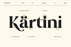 Stiepa   Modern Serif & Bonus Sans Product Image 4