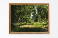 Path in the forest - Wall Art - Digital Print - Home Decor Product Image 3