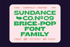 Brice Font Family Product Image 2