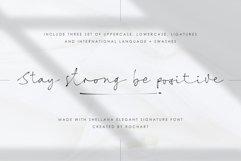 Shellana || Elegant Signature Font Product Image 6
