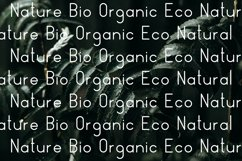 Nature Display Line Font Product Image 6